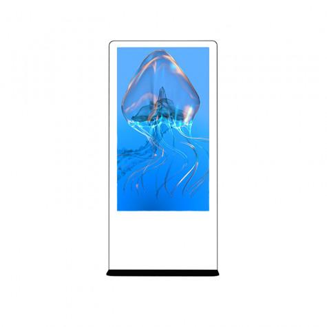 NIOBE Indoor Stele mit 65 Zoll Bildschirm Gesamtansicht